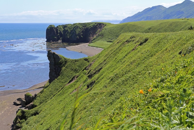 journey to sakhalin essay The main factor that makes the sakhalin project attractive for royal dutch shell (rds) is macroeconomic: the quantity of the estimated but actually, no peace agreement has been signed with japan about sakhalin and this island may be part of an eventual future conflict between both.